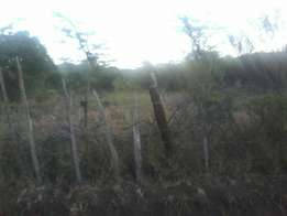 7 acres for sale in Ngare Nyiro