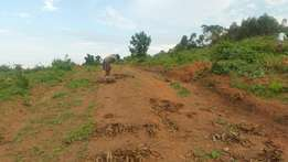 Land for Sale in Wakiso District 3.3km from the District Head Quarters