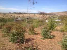 1/8th Acre Plots For Sale