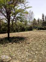 Eighth Acre Plots For Sale in Ongata Rongai Kandisi