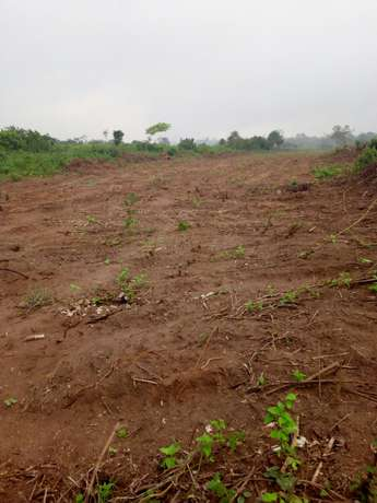 plots of land for sale at attan ota For 640k Ifo - image 5