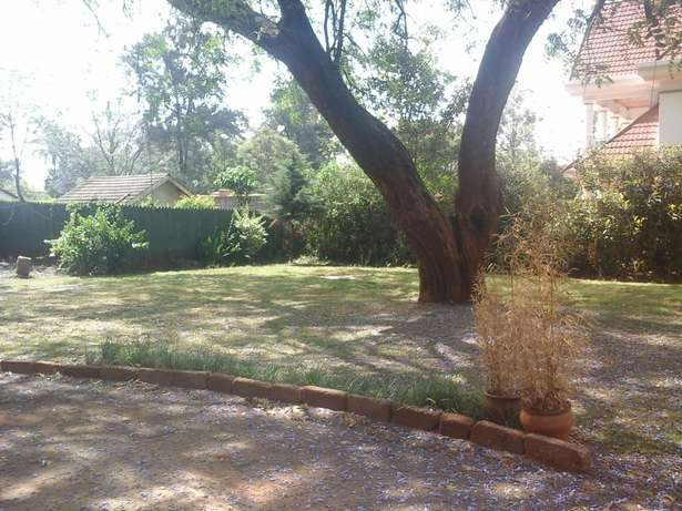 Well maintained 4 bedroom bungalow. Lavington - image 3