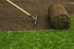 Top Quality Instant Lawn at very low prices