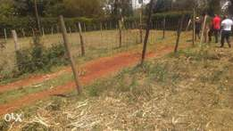½ Acre of land for sale in Nyeri (Gatitu).