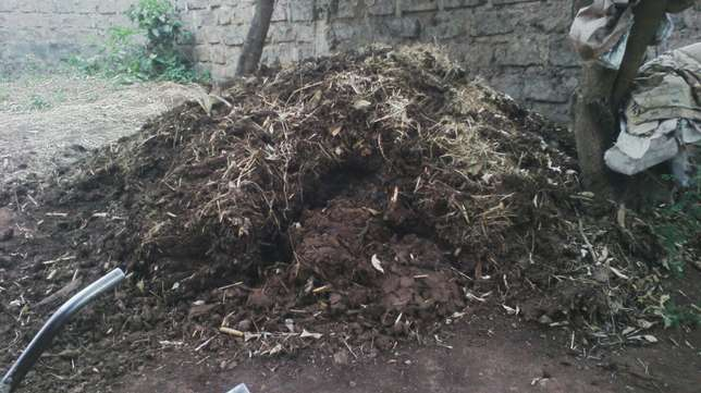 Cows manure for sale Ongata Rongai - image 2