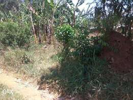 A nice plot of 50*100ft on sale in Nakagere-Bukerere at 14m