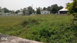 Land for sale in Central business District AGIDINGBI ikeja