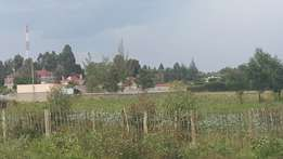 1/2 acre elgonview with title