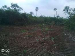 1 PLOT of LAND- Malaysia Estate at IRETE Owerri West.