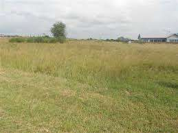 looking for a vacant land
