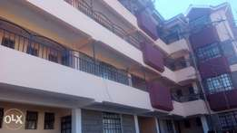 Newly built spacious 1 bedroom in Ruaka