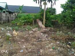 half plot for sale behind winners, sapele rd, benin
