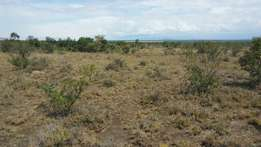 100 acres in Nanyuki, Ereri farmers at 400k per acre