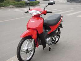 Lifan SCooter 110-2G