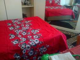 Fully furnished luxurious bachelor apartment with double bed