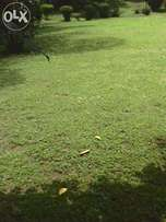 A very prime 1 acre along Riverside drive, on sewerl. For Sale.