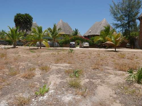 Land for Sale in Malindi. Malindi - image 2