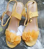 Petals leave yellow ladies shoe