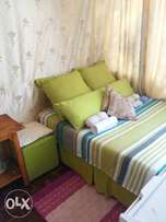Half Room available. At corner Francis baard n leyds street arcadia