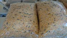 Animal Feed and Maize Products