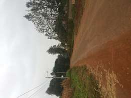 Half acre kitisuru behind ISK for sale
