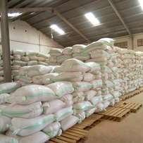 Processed maize