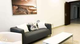 Brand new fully furnished 2 bedroom apartment for rent.