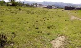 Half acre plot for sale behind Laikipia campus Nakuru