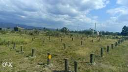 Quick sale 1/8th plot Nakuru greensted estate . 200m from highway