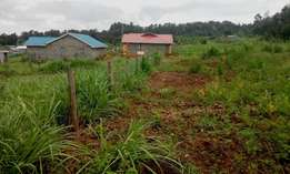 50x100 plot 500 meters from Kamangu town and 6kms from kikuyu town!