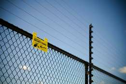 Electric Fence ( Quality & Affordable Price)