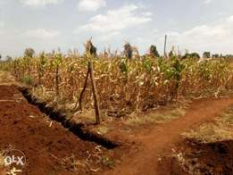 1/4 plot for sale in Kagio.