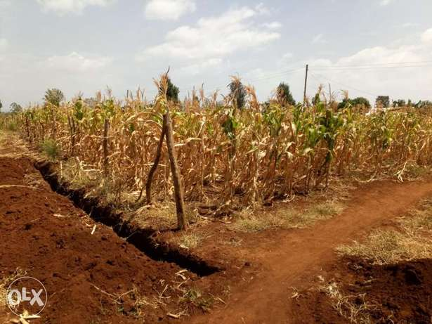 1/4 plot for sale in Kagio. Mukure - image 1