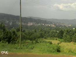 selling of a profitable land for construction