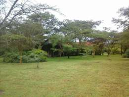 Lavington gitatanga road land for sale