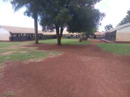Primary schooll in mukonno for selll at 623m
