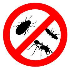 Pest control services Inadan - image 1