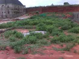 600 Square Meters Of Land With R Of O At Affordable Price