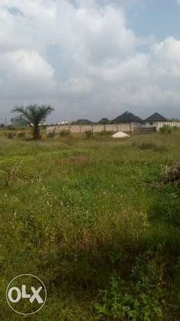 Land in a fast developing area for sale Ughelli North - image 1