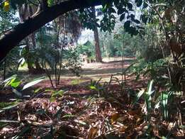 Land for sale Riara Rd