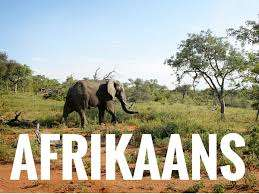 Afrikaans language learning