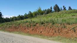 1 acre at Nguirubi 2kms from the road.