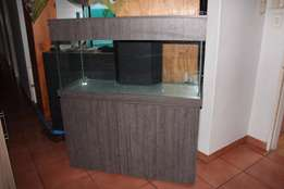 ***NEW*** 4ft Cabinet Aquarium 4ft Tank with sliding glass lid