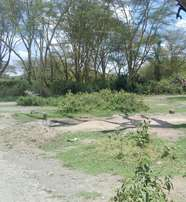 275 acres - Naivasha