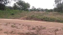 1.7 acres of land Buwalula mityana ideal for tree planting or resident