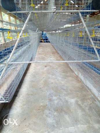 Galvanized local fabricated cages Ijebu Ode - image 5