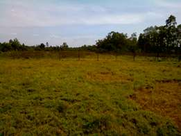 1 acre prime vacant land for sale - Sinyolo