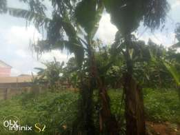 For sale 60decimals of Private mailo land, 3rentals of Ugx1.05M mo