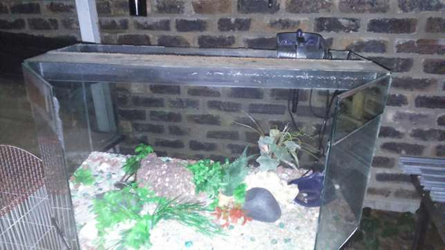 Fish tank for sale!! Strubens Valley - image 1