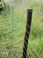 We do fencing
